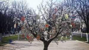 В Брянске в сквере Игната Фокина выросло пасхальное «дерево»
