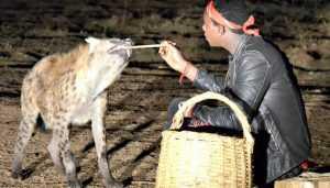 Брянская путешественница: Город, где по ночам кормят гиен