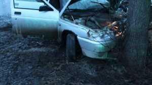 Возле Климова водитель ВАЗа врезался в дерево и сломал себе ребра и пятку