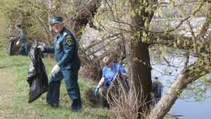 Брянские спасатели и волонтеры очистили от мусора берег Десны