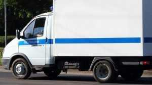 Под Новозыбковом массовое ДТП спровоцировал полицейский автомобиль