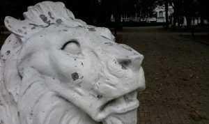В Брянске варвары изрисовали скульптуры львов в сквере Тютчева