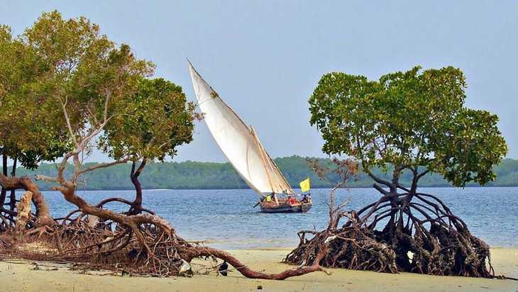Брянская путешественница: Остров без тюрьмы