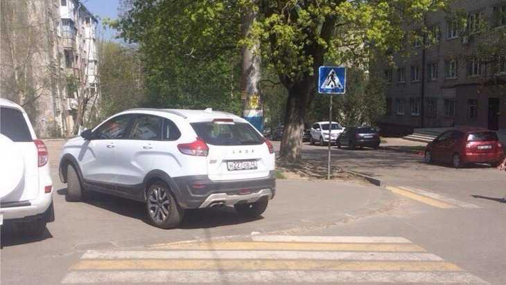 Перекрывший «зебру» водитель разгневал жителей Брянск