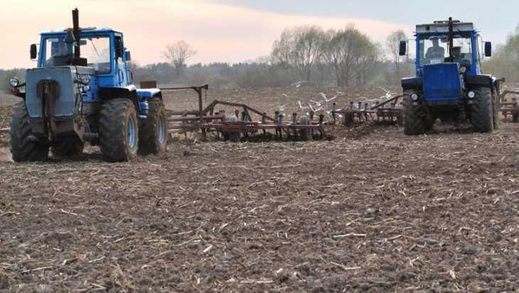 Весенне-полевые работы на Брянщине начали на 2 недели раньше обычного