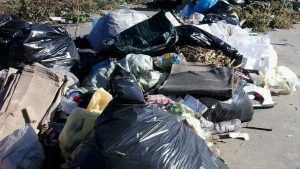 Жители Брянска вместо раздельного сбора мусора устроили свалки