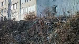 Брянские жители дома на Рославльской сделали «палисадник» из мусора