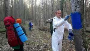 Добровольцы очертили границу заповедника «Брянский лес»