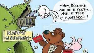 Брянских чиновников обвинили в незаконных проверках работодателей