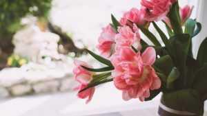 Цветы Флавери: плюсы и особенности