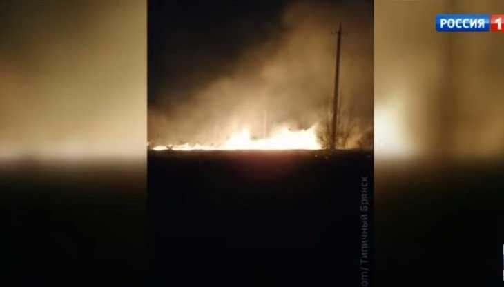 Телеканал «Россия 1» рассказал о лесных пожарах в Брянской области