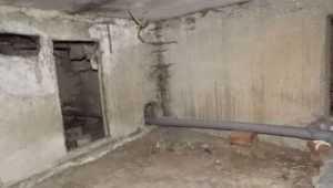 В Новозыбкове в подвале общежития обнаружили труп бродяги