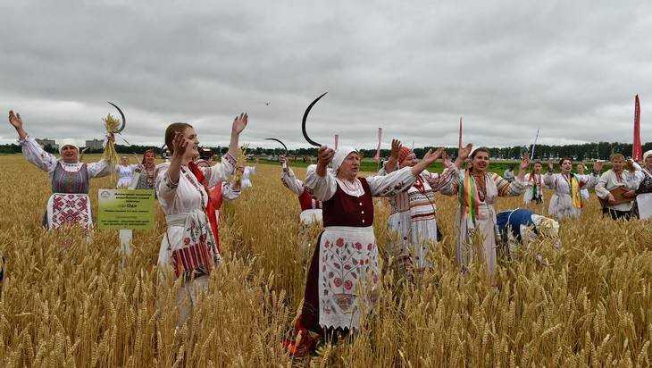 Брянские крестьяне приступили к посевной