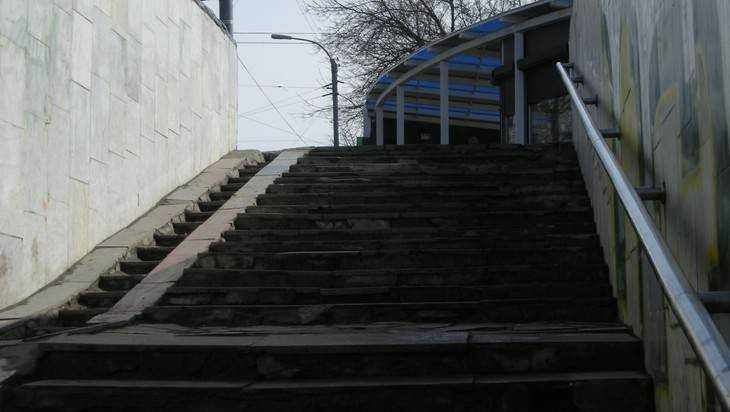 Главу Брянска попросили сделать подземный переход доступным для инвалидов