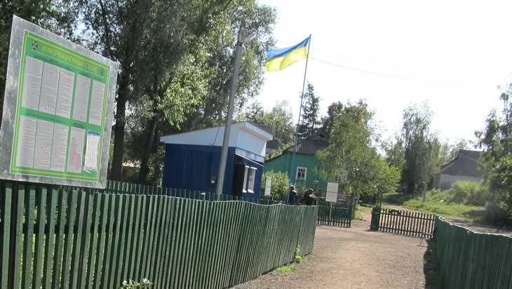 Брянские пограничники задержали настырную украинку