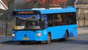 В Брянске предложили укоротить маршрут автобуса № 31