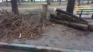 Улицу Крахмалева в Брянске завалили мусором и спиленными деревьями
