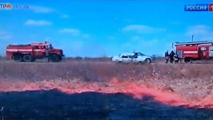 Брянское управление лесами опровергло информацию телеканала «Россия»