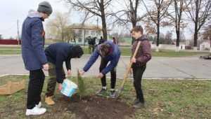 В Комаричах школьники посадили деревья в рамках экологической акции