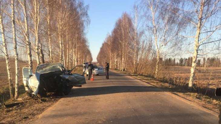 Под Дубровкой 16-летний подросток на иномарке врезался в дерево