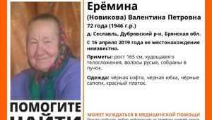 В Дубровском районе пропала 72-летняя Валентина Ерёмина