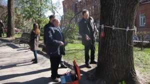 В Круглом сквере Брянска спасли от вырубки 150-летний дуб