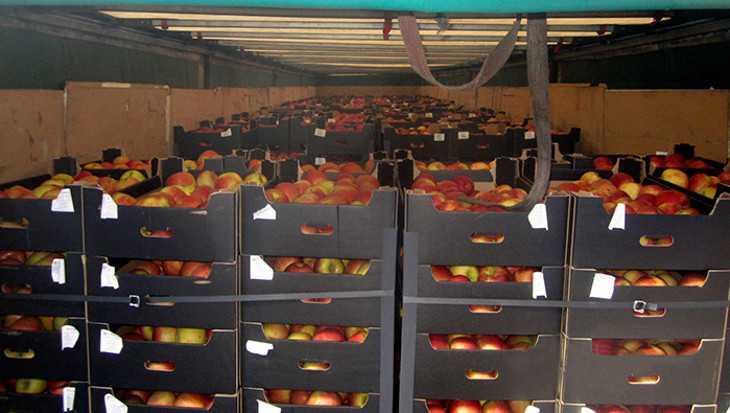 Брянские таможенники выявили польские яблоки с белорусскими этикетками