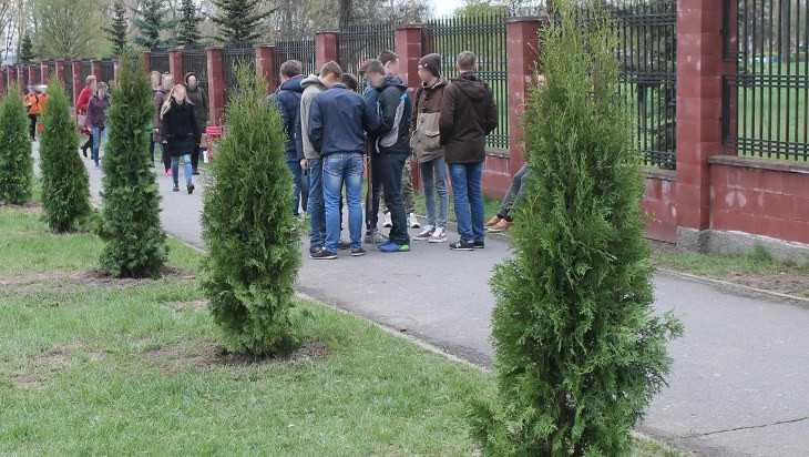 В Новозыбкове «черные лесоводы» развернули охоту за туями