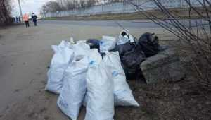 В Брянске чиновникам приказали убрать забытый после субботника мусор