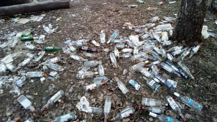 Лес возле брянской «Мексики» загадили бутылками и шприцами