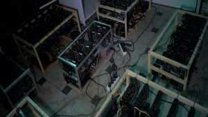 Брянцы украли сотню компьютеров для добычи криптовалюты