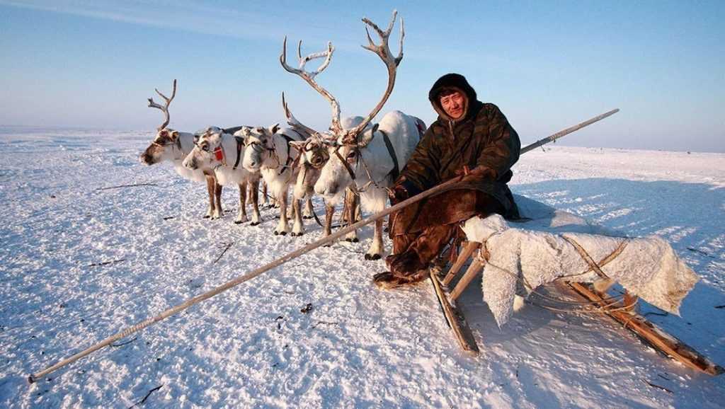 На Ямале на местного жителя завели дело за митинг в тундре