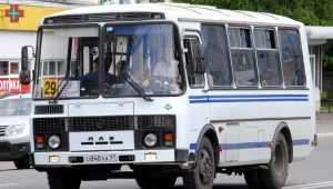 В Брянске могут исчезнуть маршрутки № 29