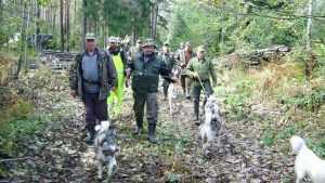 Брянским охотникам на словах дали 2,5 миллиона гектаров угодий
