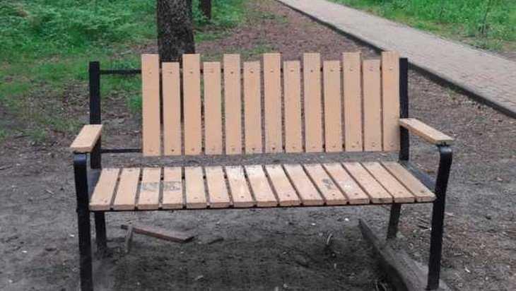 В Брянске вандалы сломали в Парке поколений скамейки и урны