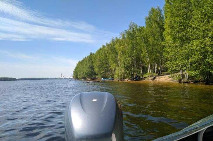 Брянцев задержали за незаконную ловлю рыбы в Смоленской области
