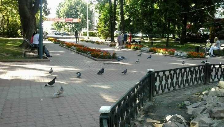 В июне начнут реконструкцию Круглого сквера Брянска