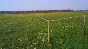 Жуковских чиновников заподозрили в незаконной продаже земельных участков