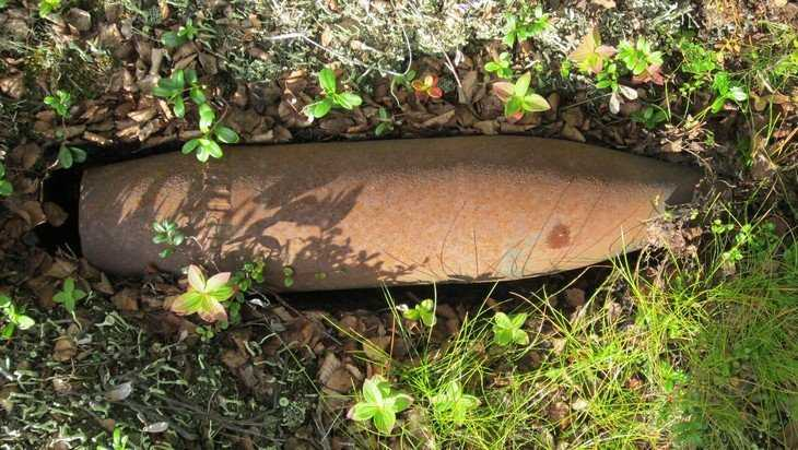Под Брянском возле Партизанской поляны обнаружили мину и снаряд