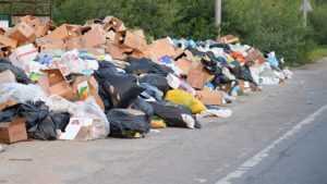 Дубровского дорожника оштрафовали за свалку возле автотрассы