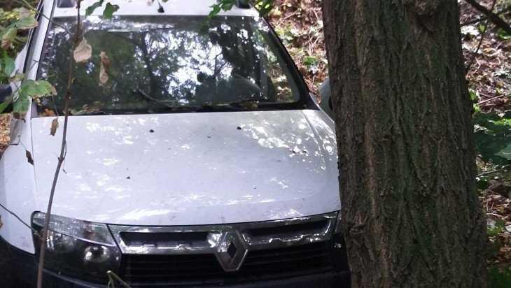 В Брянском районе автомобиль «Рено» врезался в дерево