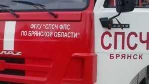 В брянском посёлке Нетьинка потушили два горевших дома