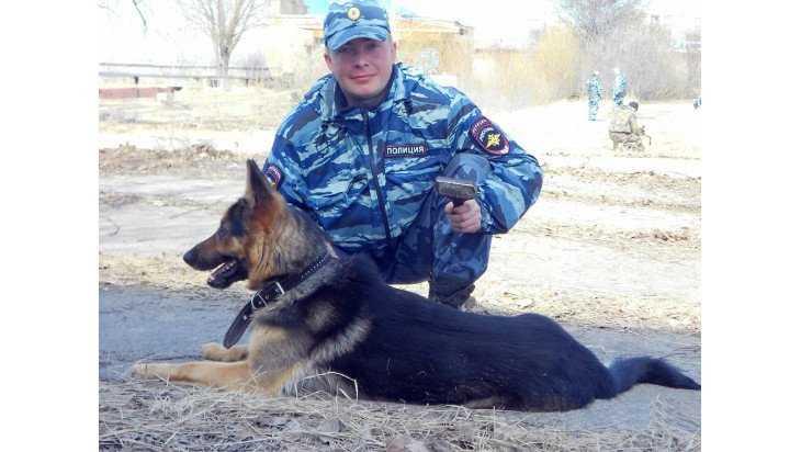 Собака полицейских помогла раскрыть в Новозыбкове жестокое убийство