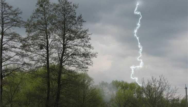 На Брянскую область обрушатся сильный дождь и гроза
