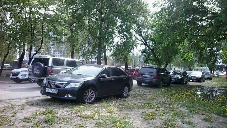 В Брянске газоны парка «Соловьи» атаковала автомобильная саранча