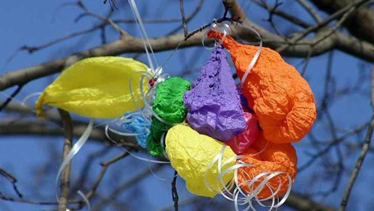 Сотрудники «Брянского леса» призвали не выпускать в небо воздушные шары