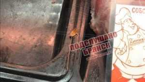 В брянском гипермаркете на прилавке заметили мясо с тараканом