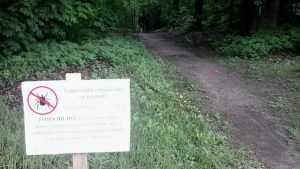 Жителей Брянска предупредили об отраве в парке «Соловьи»