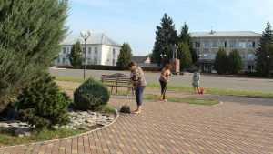 Инициативы жителей Брянщины оплатят из областного бюджета