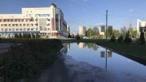 Жители Брянска попросили осушить легендарный пруд на пути к налоговой
